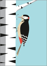 Gallery print  Woodpecker - Sandy Lohß