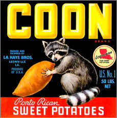 Wall sticker  Coon - Advertising Collection