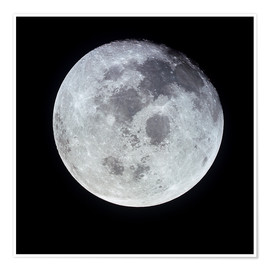 Premium poster  Full Moon - Stocktrek Images