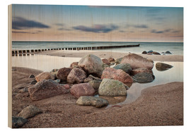 Wood  Stones and groynes on shore of the Baltic Sea. - Rico Ködder