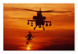 Premium poster  AH-64 Apache anti-tank helicopters