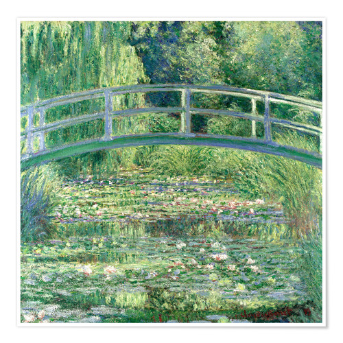 Premium poster White waterlilies