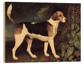 Wood print  Ringwood - George Stubbs
