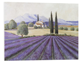 Foam board print  Lavender Fields - Franz Heigl