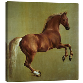 Canvas  Whistlejacket - George Stubbs