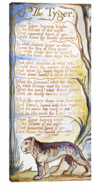Canvas print  The Tyger - William Blake