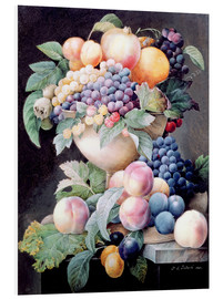 Foam board print  Fruits - Pierre Joseph Redouté