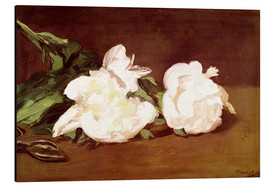 Aluminium print  Branch of White Peonies and Secateurs - Edouard Manet