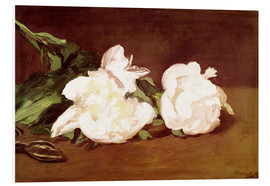Foam board print  Branch of White Peonies and Secateurs - Edouard Manet