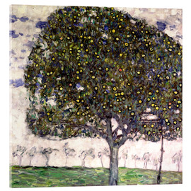 Acrylic glass  The Apple Tree II - Gustav Klimt