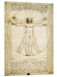 Foam board print  The Proportions of the human figure - Leonardo da Vinci