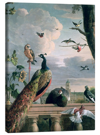 Canvas  Palace of Amsterdam with Exotic Birds - Melchior de Hondecoeter