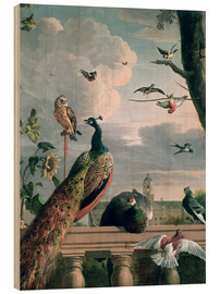 Wood print  Palace of Amsterdam with Exotic Birds - Melchior de Hondecoeter
