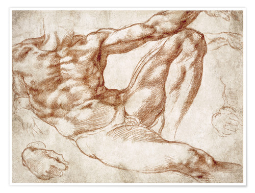 Premium poster Study on Adam from The Creation of Adam