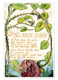 Premium poster The Sick Rose