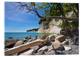 Acrylic print  Baltic Sea coast on the island Ruegen (Germany) - Rico Ködder