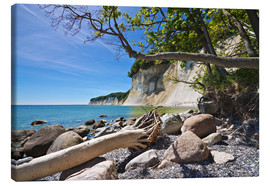 Canvas print  Baltic Sea coast on the island Ruegen (Germany) - Rico Ködder