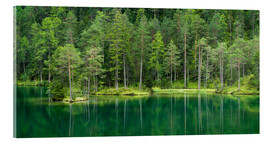 Acrylic print  Green Lake - Rainer Mirau