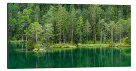 Aluminium print  Green Lake - Rainer Mirau