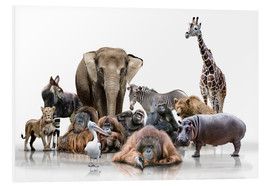 Foam board print  wild animals - Werner Dreblow