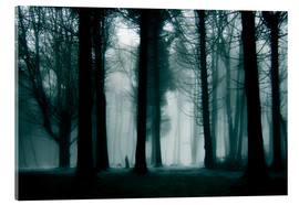 Acrylic print  Enchanted forest - Jens Berger