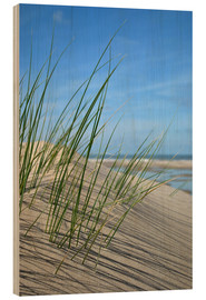 Wood print  Dune grasses before playscape - Susanne Herppich