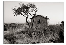 Aluminium print  Rural idyll on the island of Sardinia - CAPTAIN SILVA