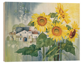 Wood print  Rays of sun flowers - Franz Heigl