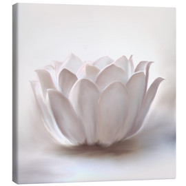 Canvas print  White lotus - Christine Ganz