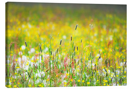 Canvas print  Spring Meadow - Suzka