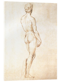 Acrylic print  Study of David - Michelangelo