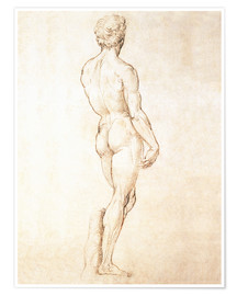 Premium poster  Study of David - Michelangelo
