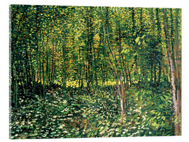 Acrylic print  Trees and Undergrowth - Vincent van Gogh