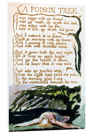 Foam board print  A Poison Tree - William Blake