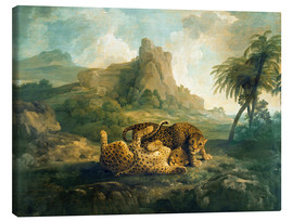 Canvas print  Leopards at Play - George Stubbs