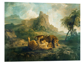 Foam board print  Leopards at Play - George Stubbs