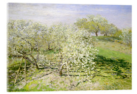 Acrylic print  Flowering apple trees in spring - Claude Monet