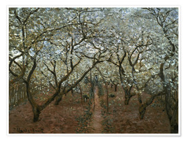 Premium poster Blossoming Orchard