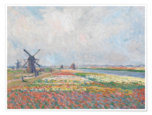Premium poster Flower fields and Windmills