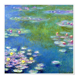 Poster  Nymphéas - Claude Monet