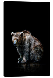 Canvas print  Brown bear - Werner Dreblow