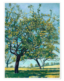 Premium poster  Paddock with apple trees - Ferdinand Hodler