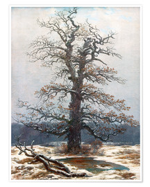 Poster  Oak Tree in Snow - Caspar David Friedrich