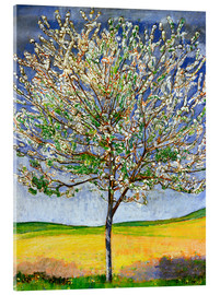 Acrylic print  Blossoming cherry tree - Ferdinand Hodler