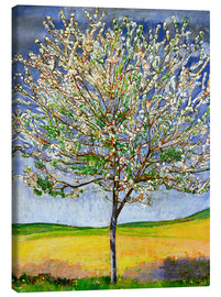 Canvas  Blossoming cherry tree - Ferdinand Hodler