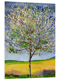 Foam board print  Blossoming cherry tree - Ferdinand Hodler