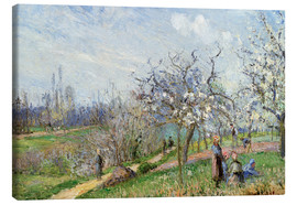 Canvas print  Orchard in Blossom - Camille Pissarro