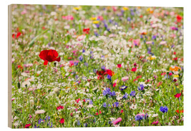 Wood print  Colorful Meadow - Suzka
