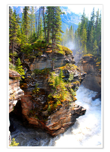 Pure Wilderness At Maligne Canyon In Jasper National Park Canada Posters And Prints Posterlounge Com