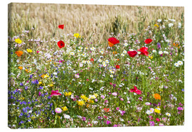 Canvas print  Summer meadow - Suzka
